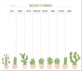 Use our 'Week at a glance' class timetables for babies, pre-schoolers and toddlers to help you plan your week.