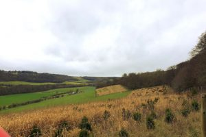 Turville Manor Family Walk field view
