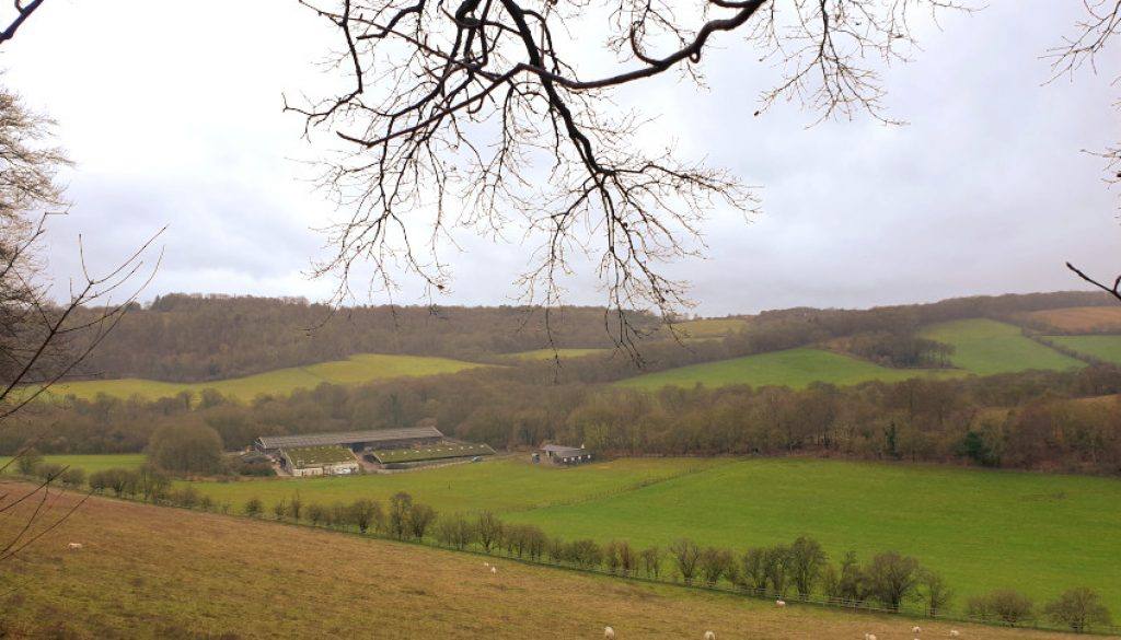 Turville Manor Family Walk view