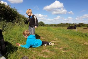 frieth village family walk cows