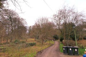 Pheasants Hill family walk woodland