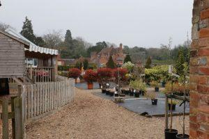 Maidenhead thicket family walk garden