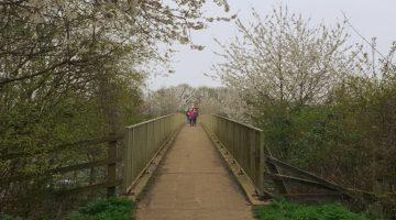 maidenhead thicket to stubbings family walk