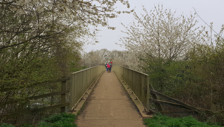 maidenhead thicket to stubbings family walk