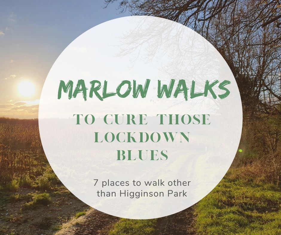 Marlow walks