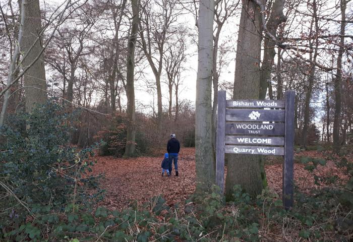 Marlow family walk in Bisham Woods
