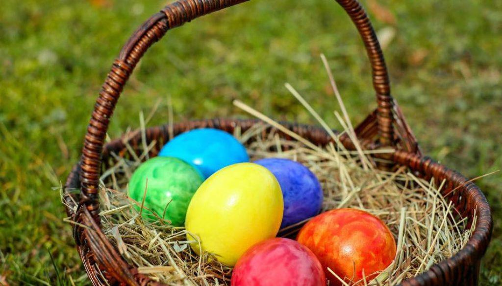 Crocus dorney court egg hunt
