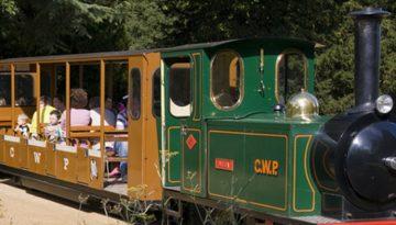 Cotswold Wildlife park train