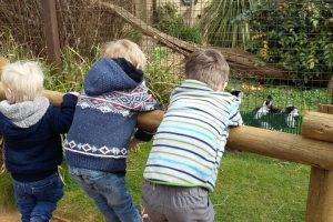 Cotswold Wildlife park kids