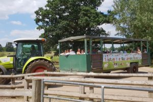 Willows activity farm tractor ride