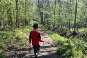 Ashley Hill family walk path