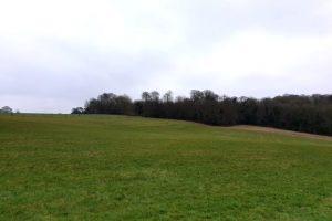 Frieth village family walk view