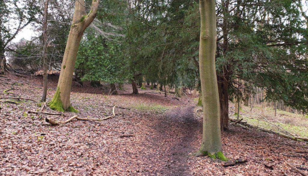 frieth village family walk route 2