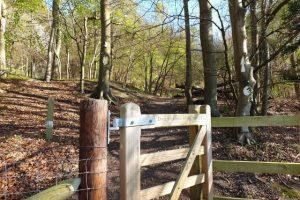 Skirmett Family Walk Gate