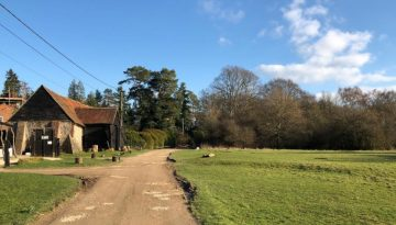 turville heath family walk cafe