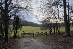 Turville Heath Family Walk View