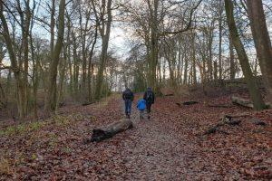 Turville Heath Family Walk