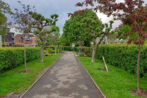 Henley Park Playground walk through