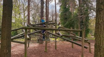 pinewood adventure park 1