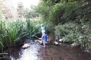Wycombe Rye stream