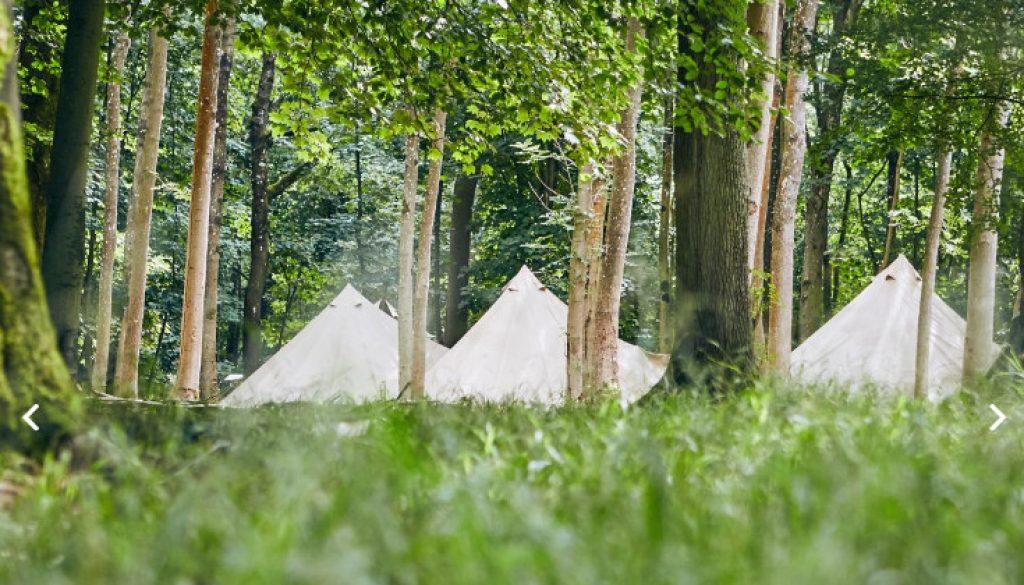 Camp Wilderness Blenheim